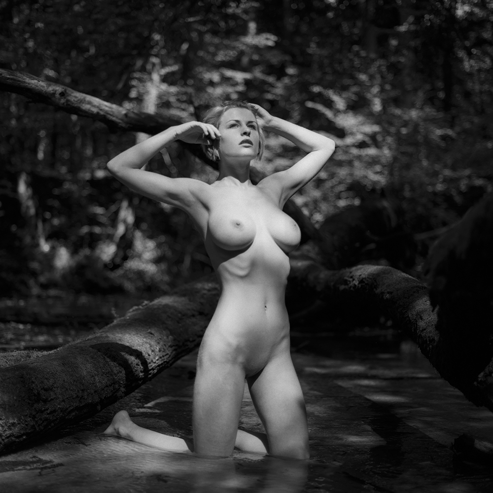 polska, analog, hasselblad 203FE, modelka, Ninoveron, akt, nude, Daria, plener