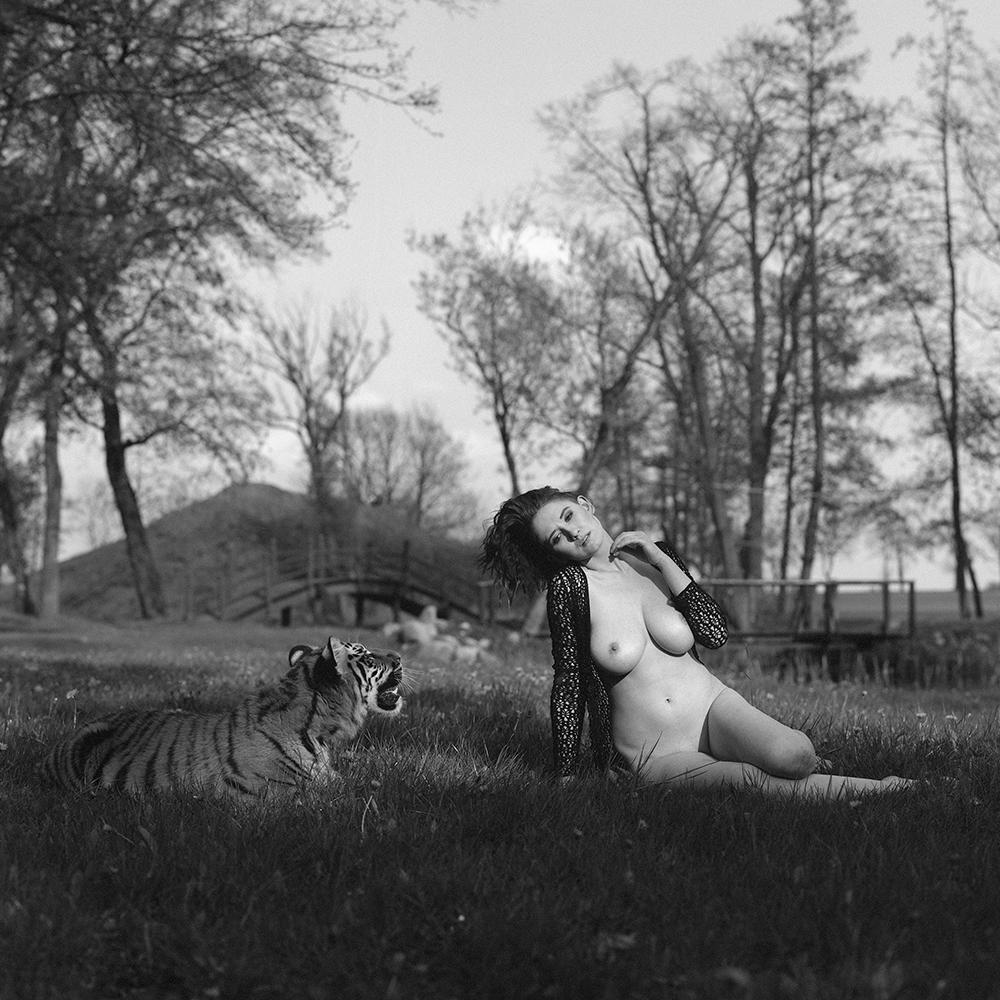 analog, hasselblad 203FE, modelka, Ninoveron, akt, nude, plener, Ola, tygrys, tiger,